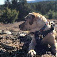 mac trail hike
